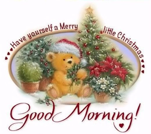Christmas Good Morning Quotes: Good Morning Christmas