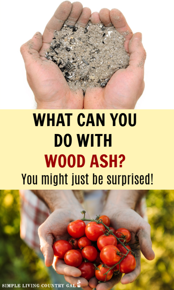 How To Easily Use Wood Ash In Your Garden And Compost Pile Soil Improvement Garden Soil Garden Pests