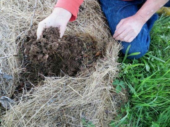 Technique du foin pour évirer de retourner la terre jardin Pinterest - Ou Trouver De La Terre De Jardin