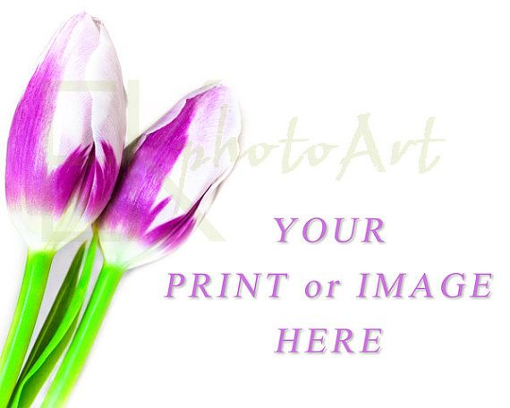 Ready to put a professional touch on your online shop, website, blog or profile? Tired of amateur photos?  Instant Download Styled Stock Photography by http://www.etsy.com/shop/ekphotoart