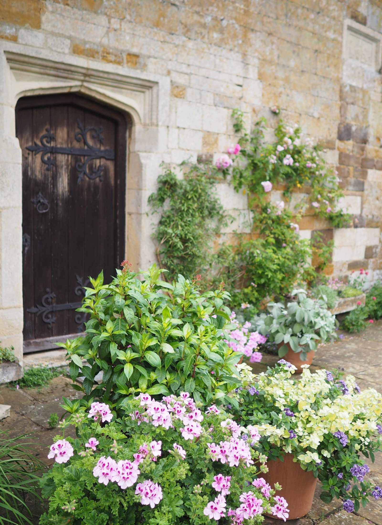 Beautiful British Gardens: Coton Manor Gardens ...