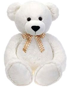 White Teddy Bear with gold tie