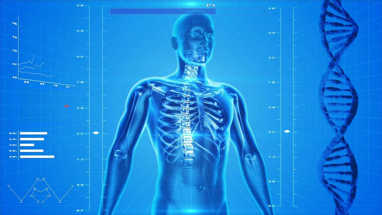 24+ How does osteoporosis affect the immune system info