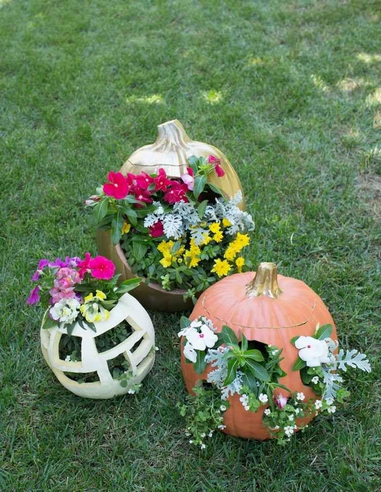 attraktive outdoor herbstdeko selber machen k rbisse bepflanzen diy herbst deko diy. Black Bedroom Furniture Sets. Home Design Ideas