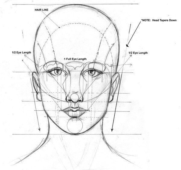 Gesicht zeichnen lernen - Proportion und Tutorial-dekoking-com-4 ...