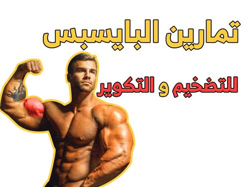 اقوى تمارين البايسبس للتضخيم و التكوير Biceps Workout Biceps Workout