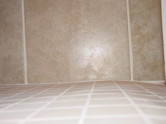 Roll In Shower: Side View Of The Hump