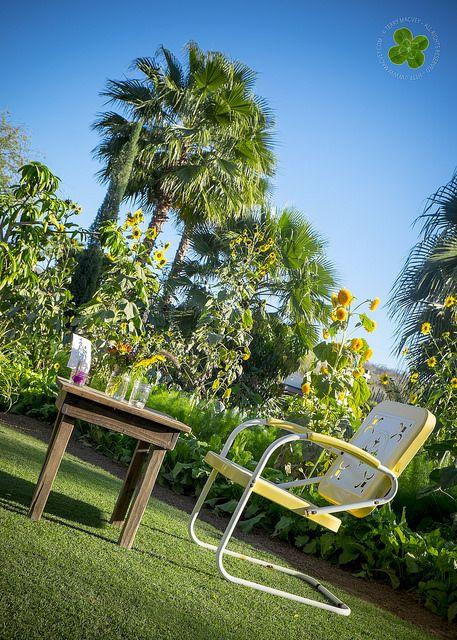 Flora Farm. San José del Cabo, Baja California Sur, Mexico. | Flickr - Photo Sharing!