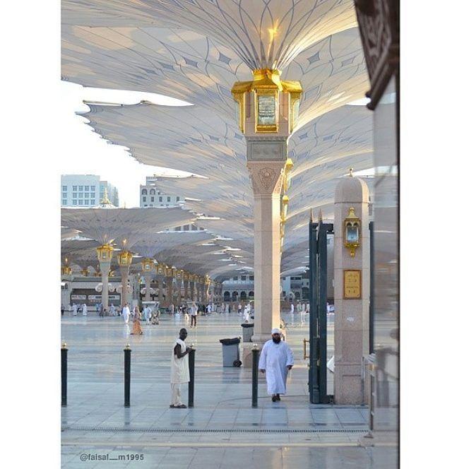 Faisal M1995 أيضا من الفنان من المدينة يلا لاكات يا جماعة Concept Art Unique Gemstones Real Butterfly Wings