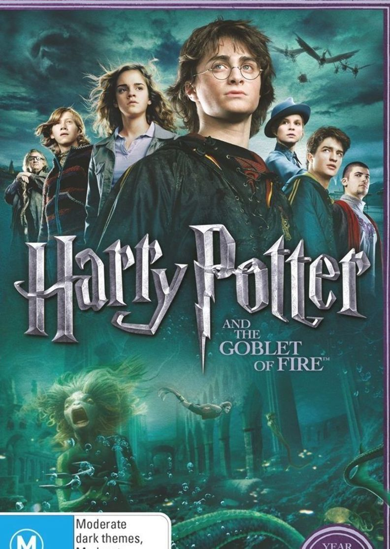 Harry Potter And The Goblet Of Fire Limited Edition Year 4 Goblet Of Fire Harry Potter Goblet Harry Potter Dvd