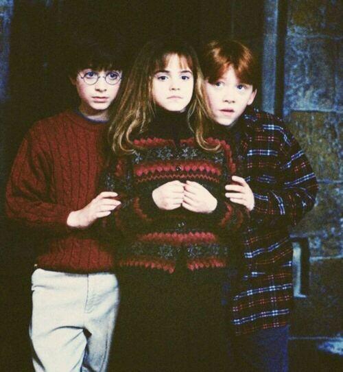 Harry Potter Hermione Granger Ron Weasley Harry Potter Film Harry Potter Anime Harry Potter