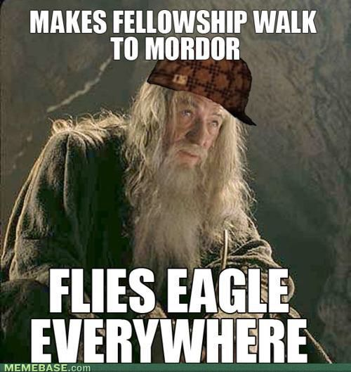 Gandalf Wise Owl Movie Memes Mordor Funny Pictures