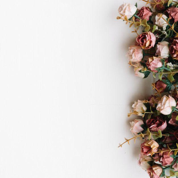 Flores Sobre Fondo Blanco Photography En 2019 Pinterest Fondos