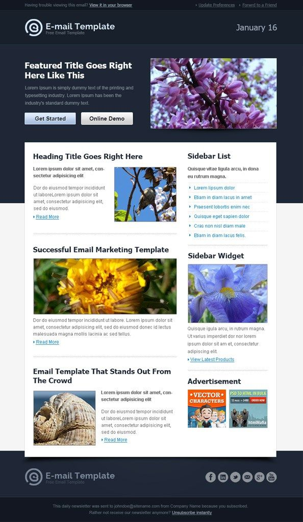 Best Email Newsletter Templates Html Psd  Free Download