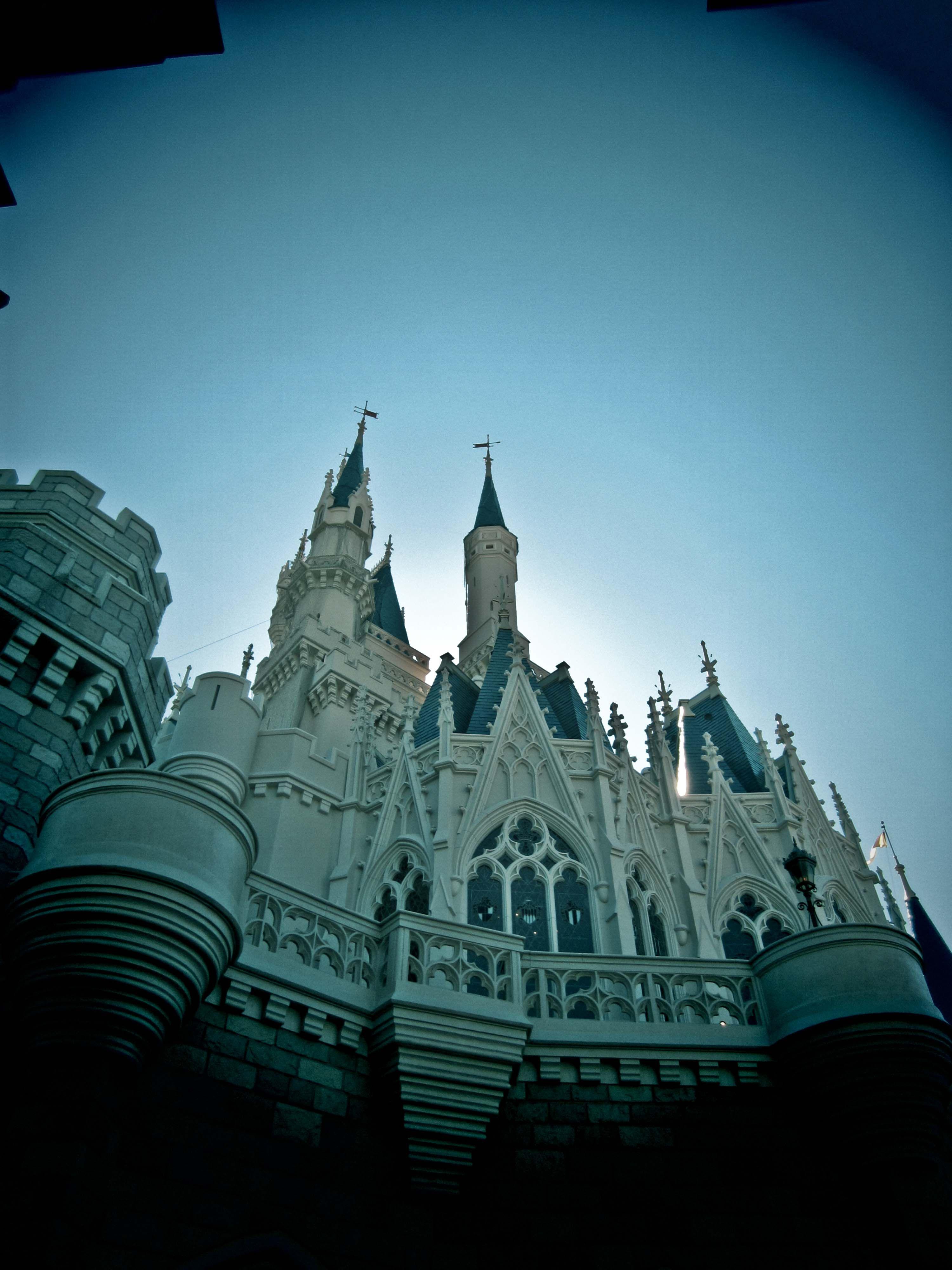 Honeymoon! Cinderella's Castle, Disney World1
