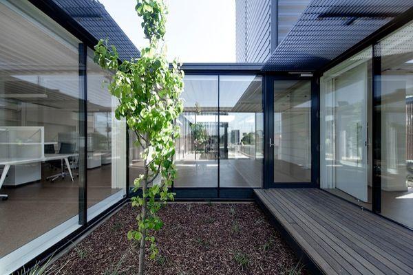 Royal wolf oficinas contenedores patio suelo madera 013 for Diseno de oficinas con contenedores