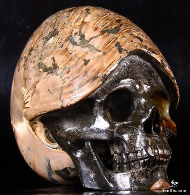 Hand-Carved Skulls Made from Ammonite Fossils