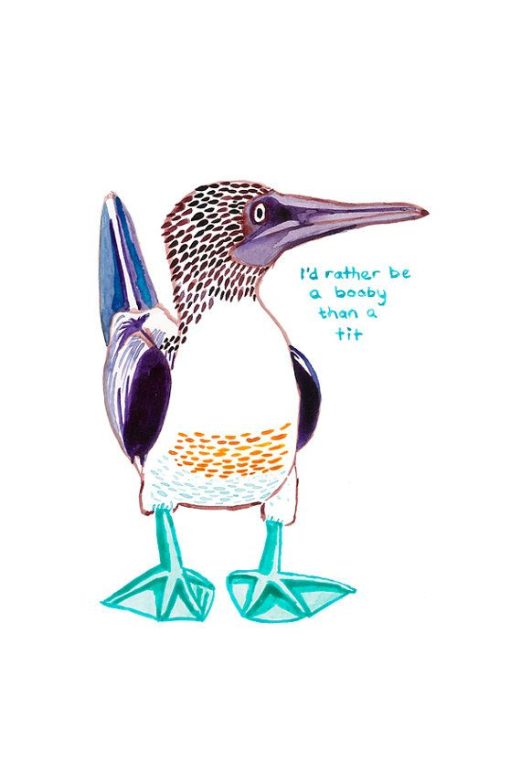 Nice Boobies card with blue footed booby illustration