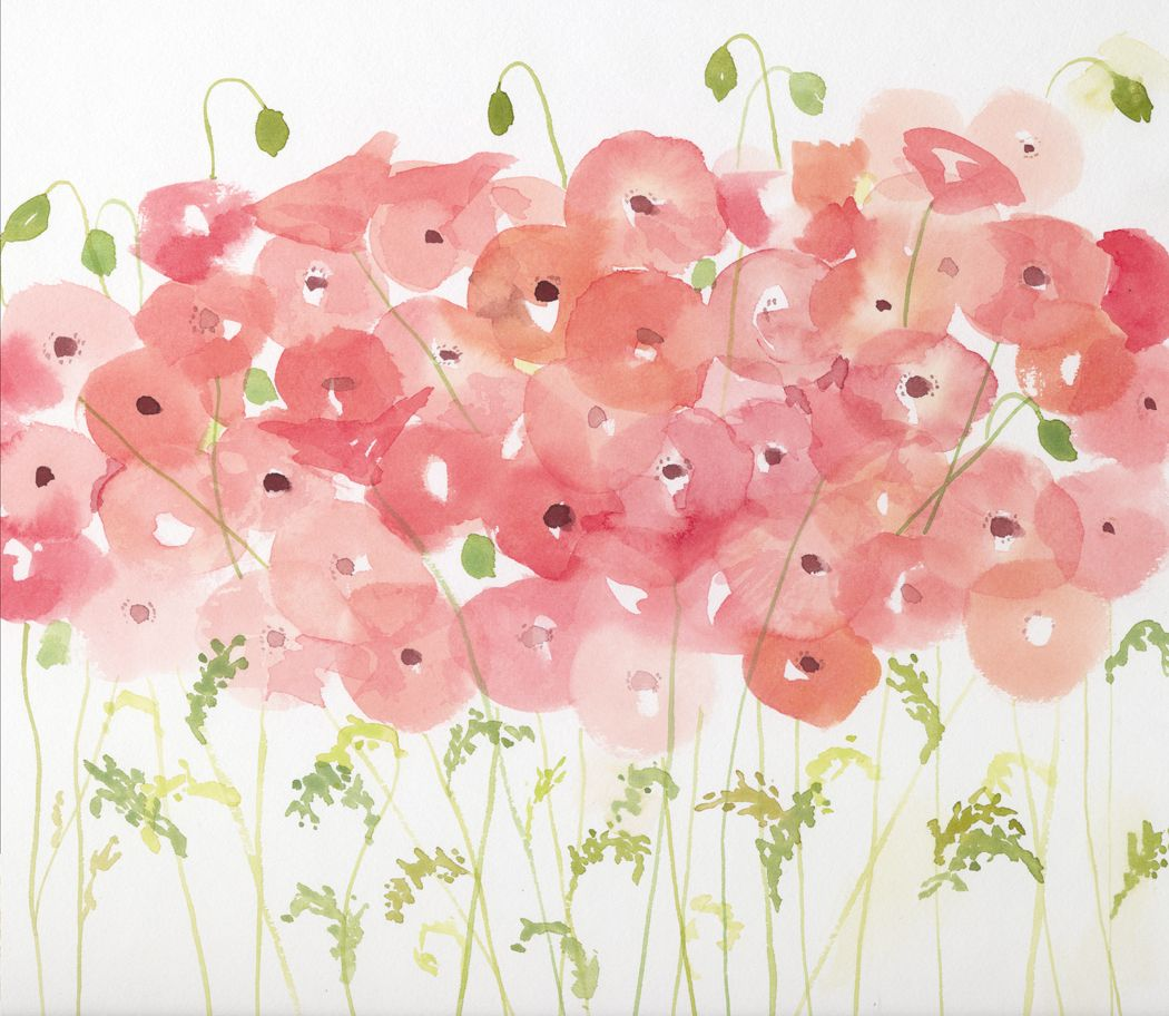 A watercolor of pink poppies and buds