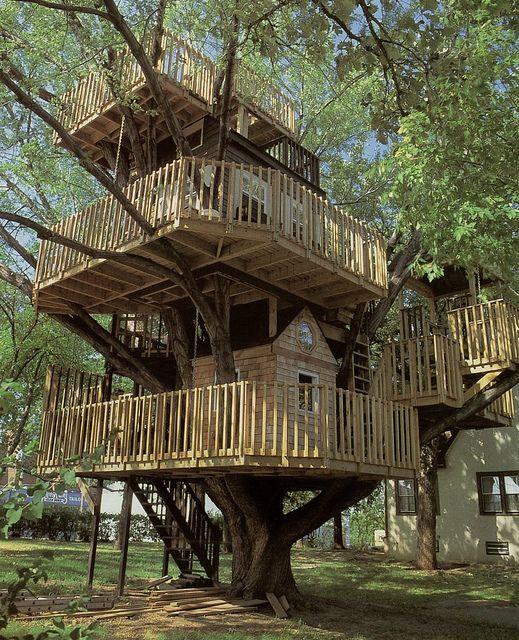 Untitled Casa del arbol, El arbol y Casas - casas en arboles