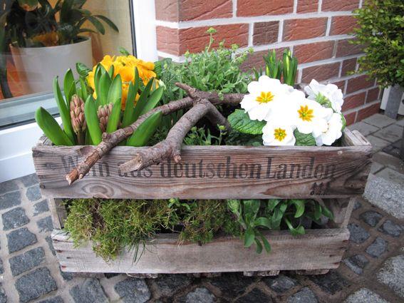 Bepflanzte Weinkiste Weinkiste Garten Terrasse all sorts of garden