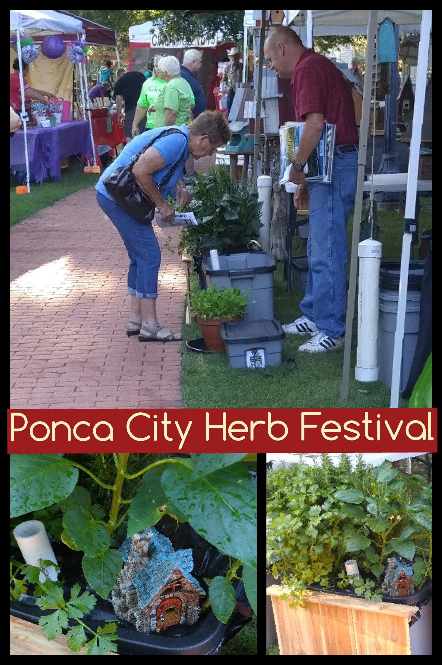June 5, 2016 We participated in the Ponca City Herb Festival this year. It was a great time with lots of unique vendors.