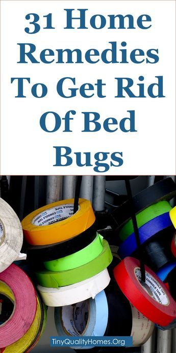 31 Home Remedies And Bed Bug Repellents To Get Rid Of Bed Bugs