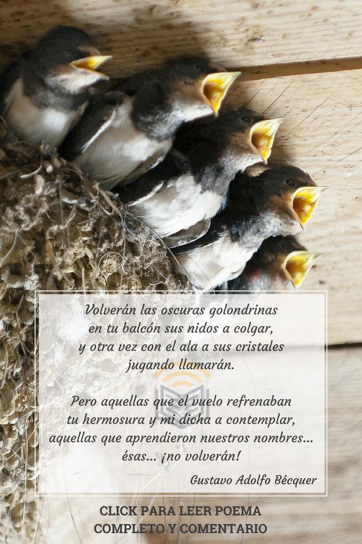 Pin De Hilda Beatriz En Letras Poemas De Desamor Poemas Alegres Poemas Tristes