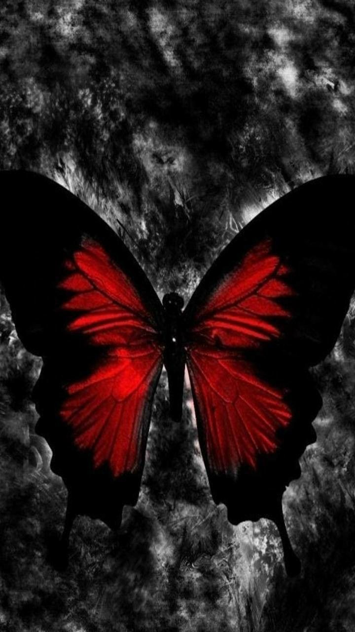 Red Butterfly Gothic Wallpaper Gothic Background Butterfly Wallpaper