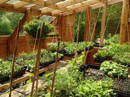 how to build an earth sheltered greenhouse natural health green houses house and gardens. Black Bedroom Furniture Sets. Home Design Ideas