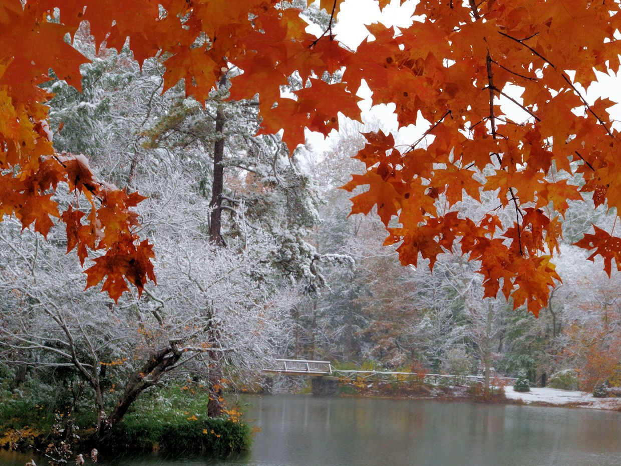 bass pond with fall color and snow on biltmore estate nc. Black Bedroom Furniture Sets. Home Design Ideas
