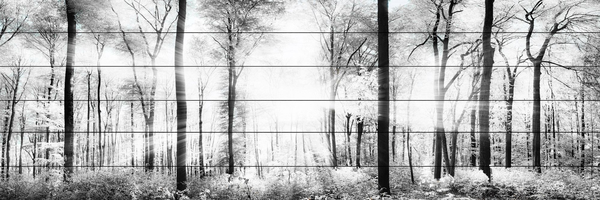 White light forest painting print products pinterest painting