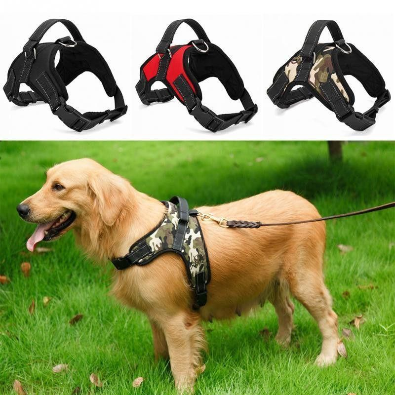 Soft Adjustable Dog Harness With Handle Dog Harness Dog Walking