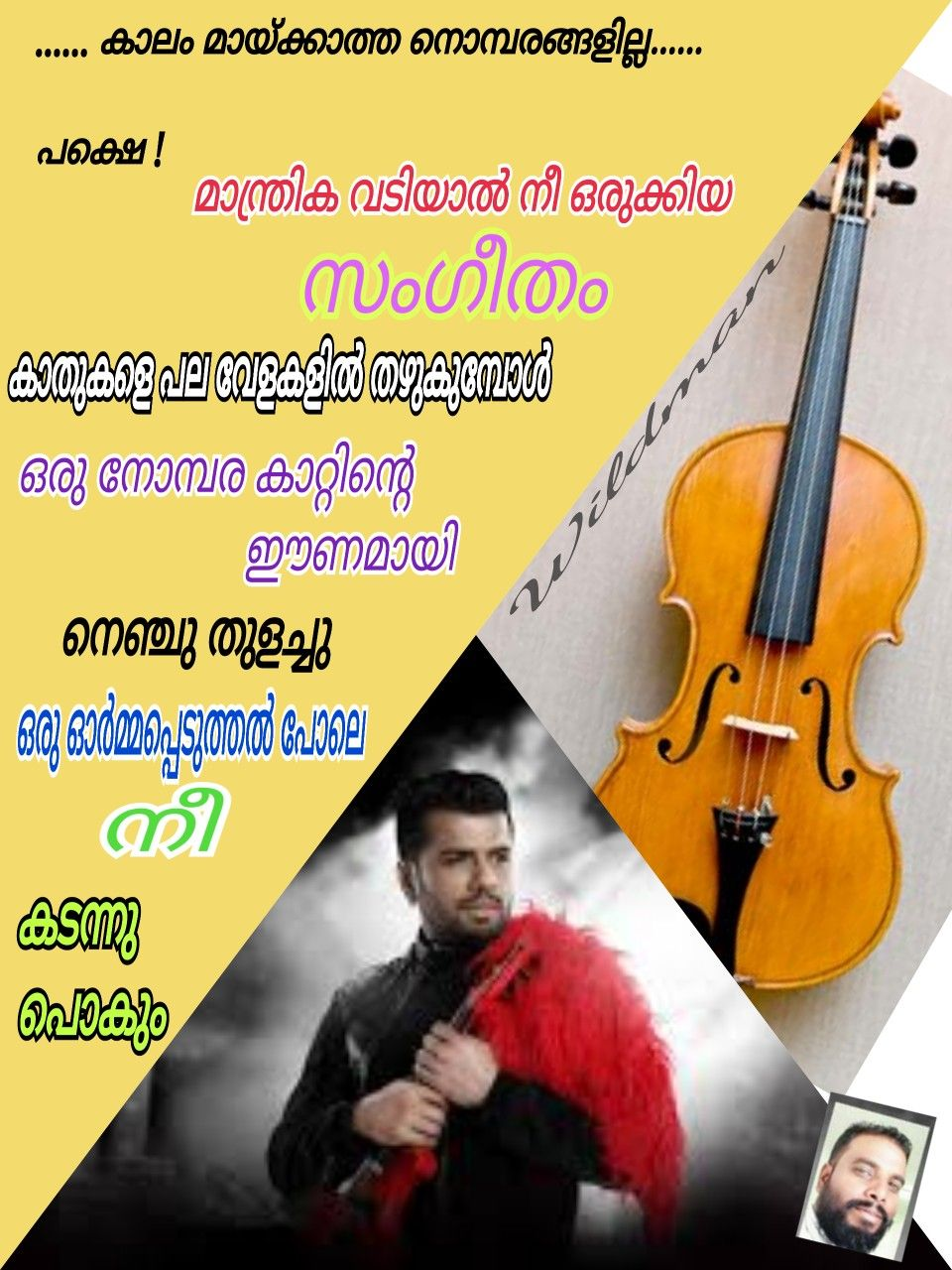 Pin By Anilkumar Tr On My Malayalam Poems Violin Poems Music Instruments