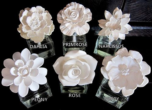 Different Types Of Flowers Flower Diffuser Ceramic Flowers Porcelain Flowers