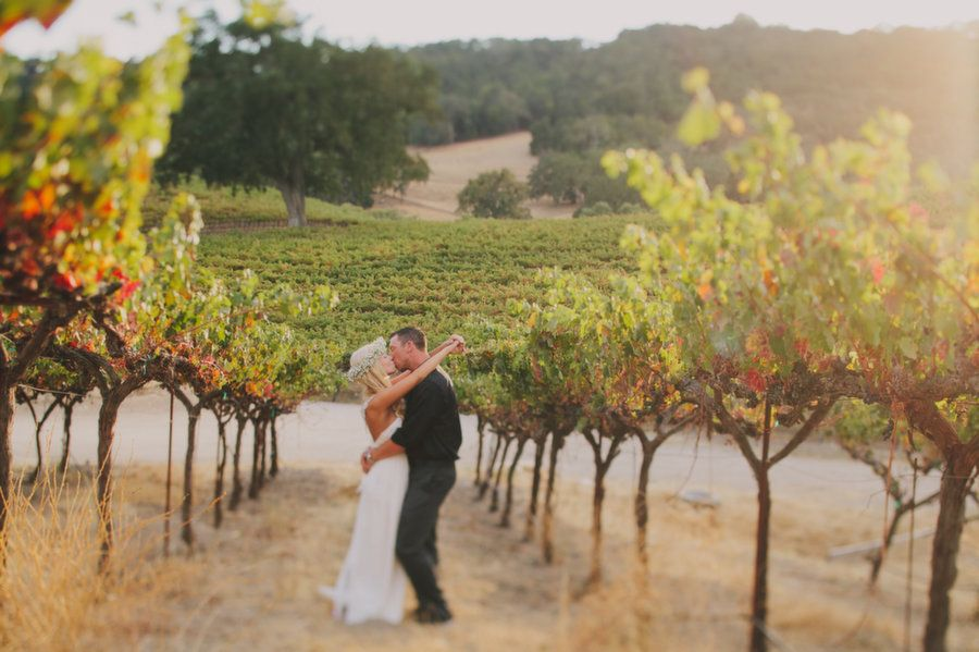 Bride and groom sneaking off for sunset in the vineyard at Hammersky Winery. Photo credit to Jake and Necia Photography.
