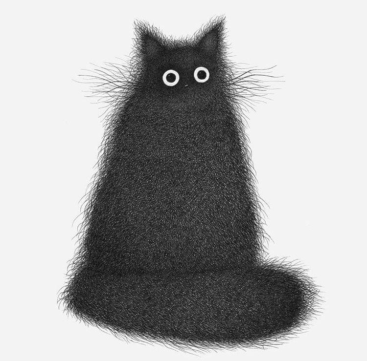 Pin En Le Chat