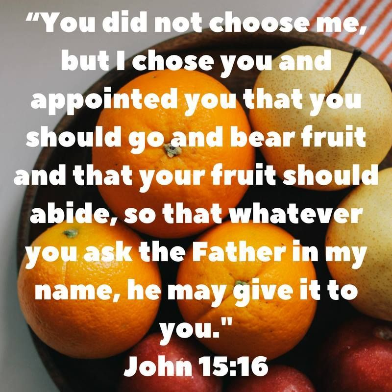 John 15:16 New International Version (NIV) 16 You Did Not