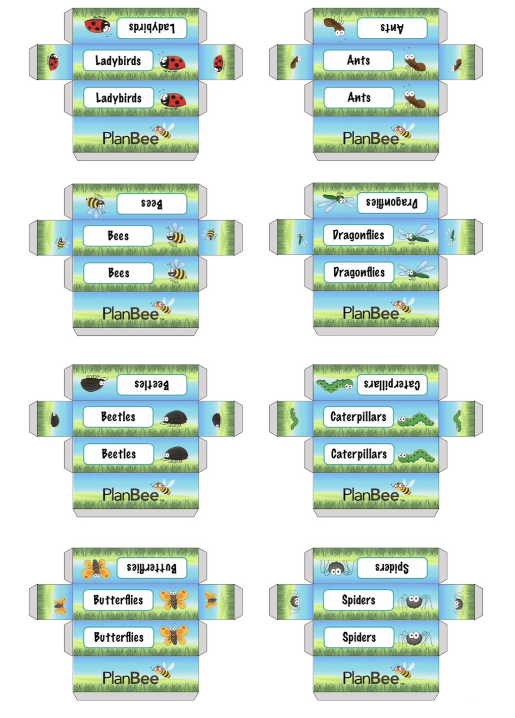 Minibeast Group Name Labels | Free Resources | Name labels, Names