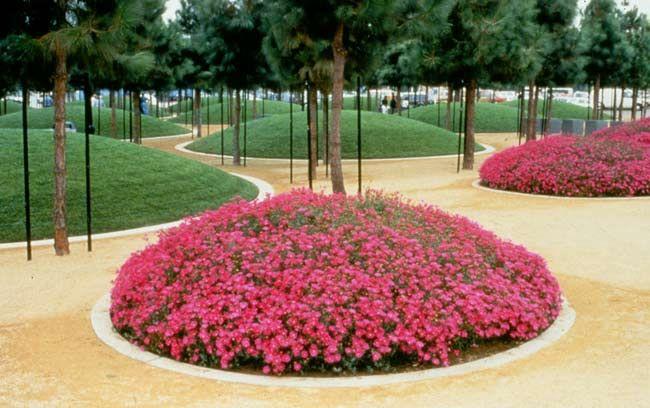 Un espacio para la jardinería, el paisaje y la naturaleza Design - diseo de jardines urbanos