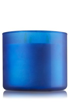 I am currently burning the Eucalyptus Mint & Waves 3-Wick Candle - Slatkin & Co. - Bath & Body Works and I LOVE IT I need to buy more before the summer is done
