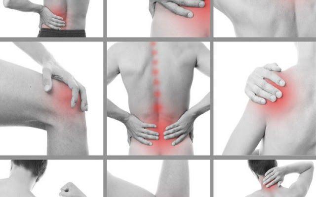 Los Huesos De La Espalda - iPad Contest