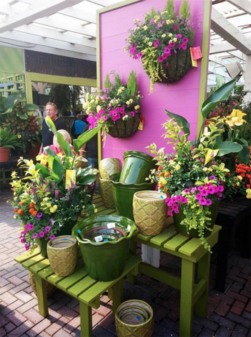 Gethsemane Garden Center Garden Center Displays Plant Display Ideas Lawn And Garden