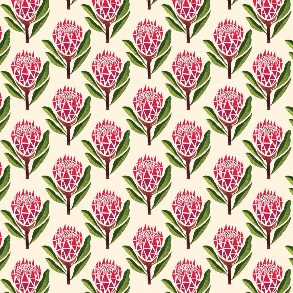Images For King Protea Illustration Prints Protea Art Fabric