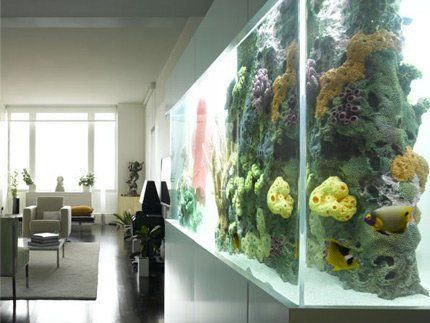 AT on... Home Aquariums