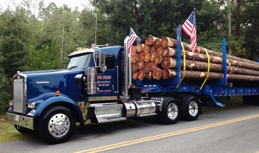 Loghaul 'pride and joy' KW W900 Kenworth, Trucks, Haul