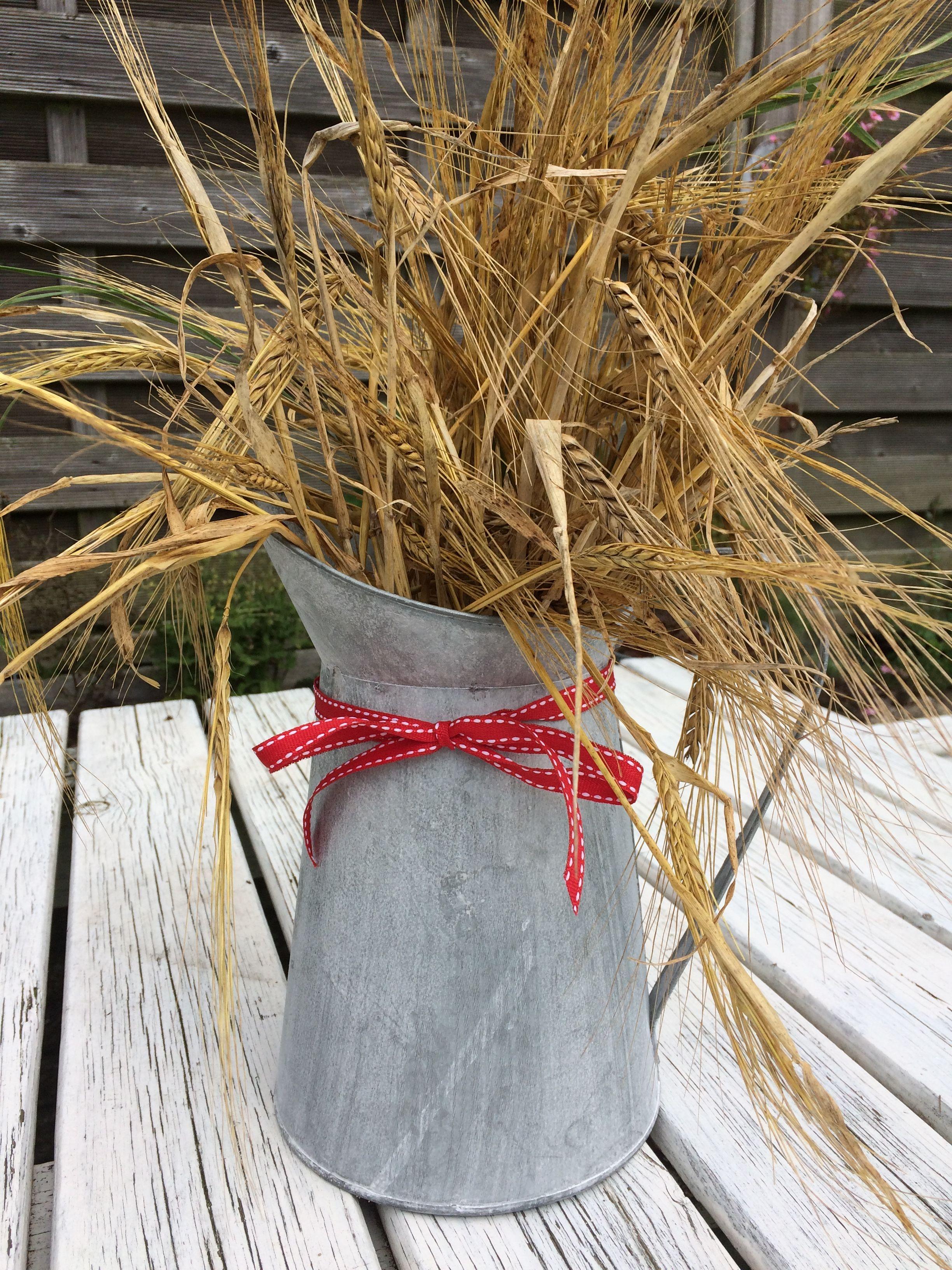 Når kornmarkerne står i fuldt flor, så er det virkelig snart efterår! For efter høsten kommer regnen og alt andet der hører efteråret til.