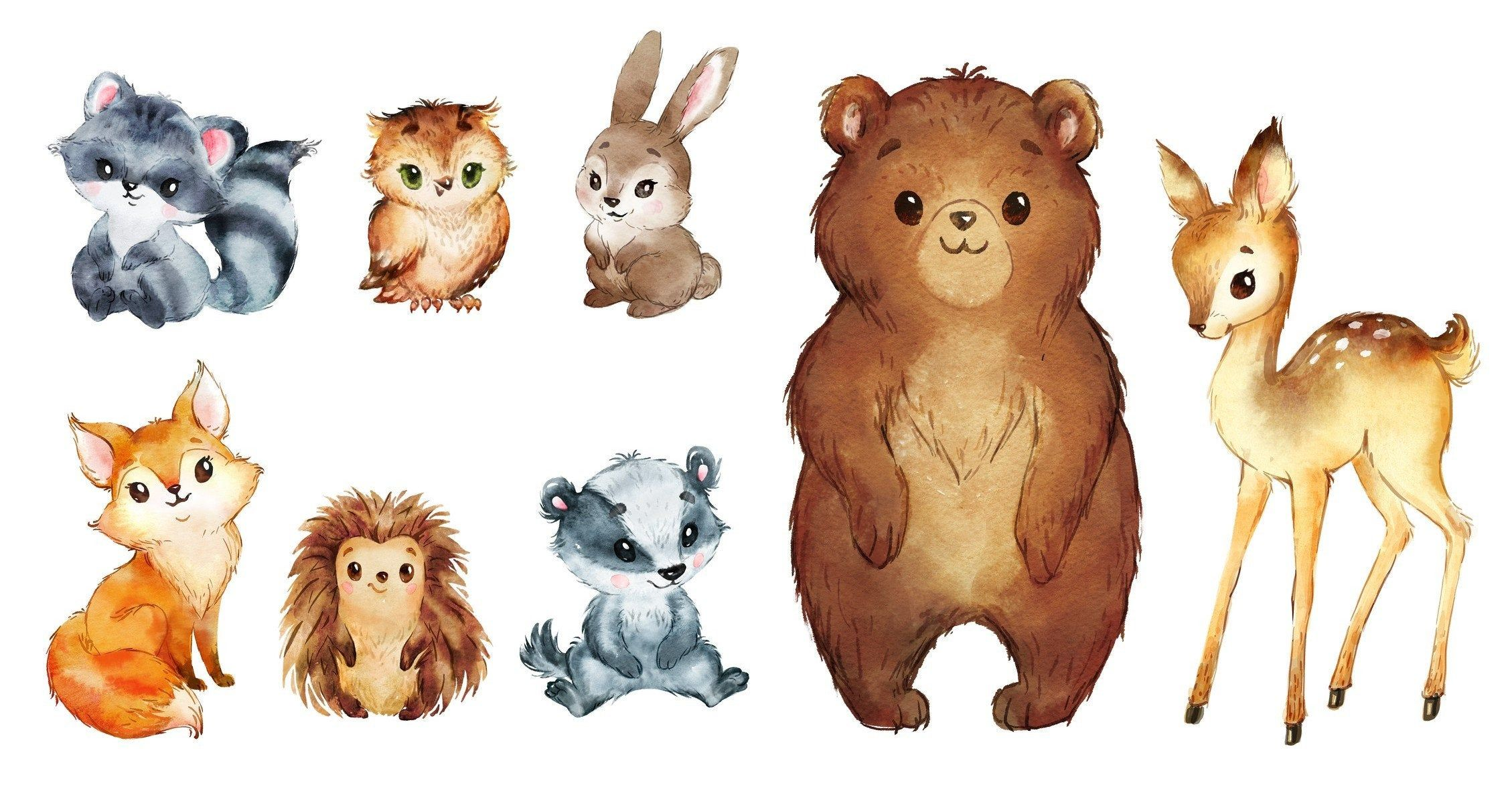 forest animals stock photos and images. Watercolor Woodland Animals Clipart Forest Animals Clip Art Etsy Forest Animals Illustration Animal Drawings Animal Illustration