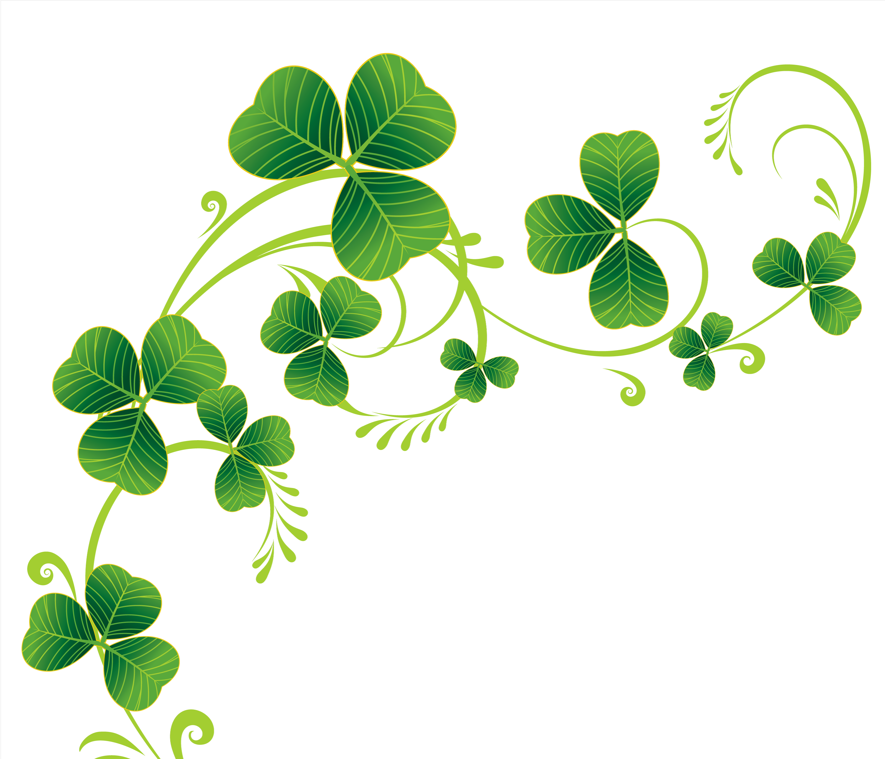 border of shamrocks clipart clipart kid the stirling pinterest rh pinterest com 3 leaf clover clipart clover clip art free