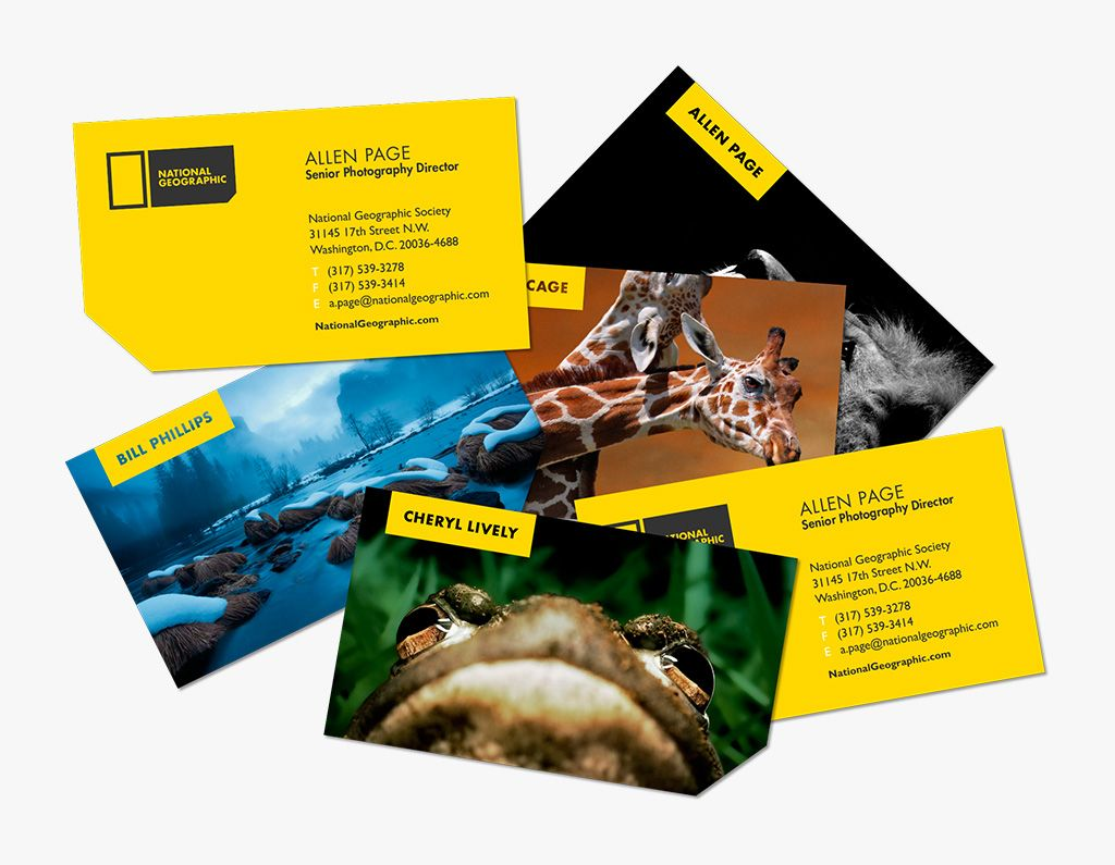 National Geographic rebrand Examples of business cards